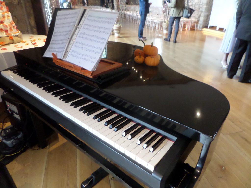 Baby Grand Piano Shell - Wedding Pianist Hampshire